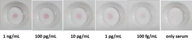Colorimetric LPS gradient